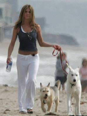 jennifer-aniston-and-dogs-norman-and-dolly