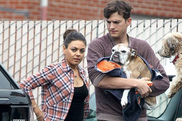 Ashton Kutcher and Mila Kunis go to allegedly put his beloved dog down