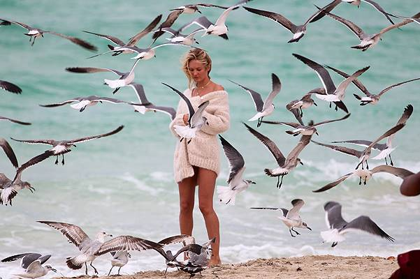 Candice Swanepoel surrounded by a flock of seagulls at the beach in Miami