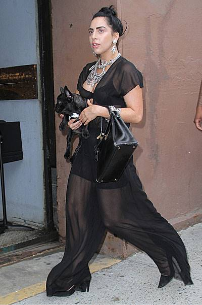 Lady Gaga accentuates a dressed down look with lots of jewelry and her cute pooch