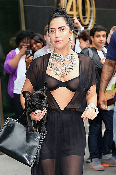 Lady Gaga wears a see-through outfit when out and about with her dog Asia in NYC