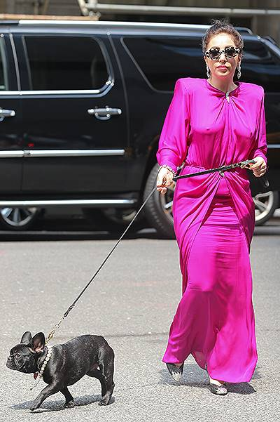 Lady Gaga steps out with her dog Asia wearing all diamonds in New York City
