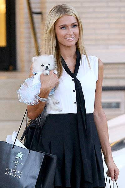 Paris Hilton and her $13k pooch take a shopping trip to Barney's - Part 2