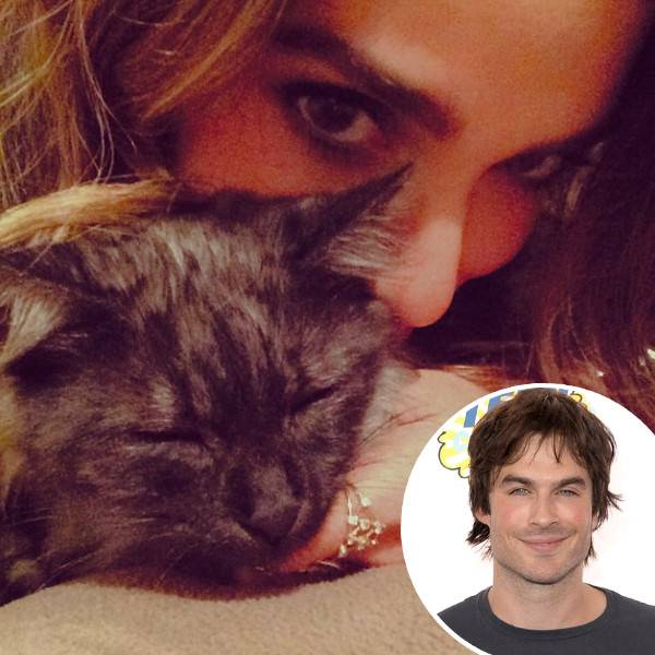 nikki-reed-ian-somerhalder-cat